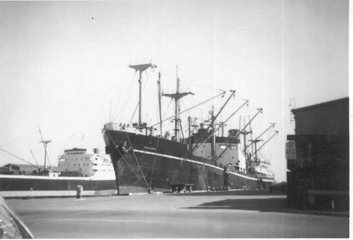 """General cargo vessel """"Balarr"""", built in  1948 by the Broken Hill Proprietry Co Ltd - Whyalla for the Australian Shipping Board.  She was sold on completion to Australianb Steamships Pty Ltd (Howard Smith Ltd - managing agents)  In 1964 the owner was renam"""