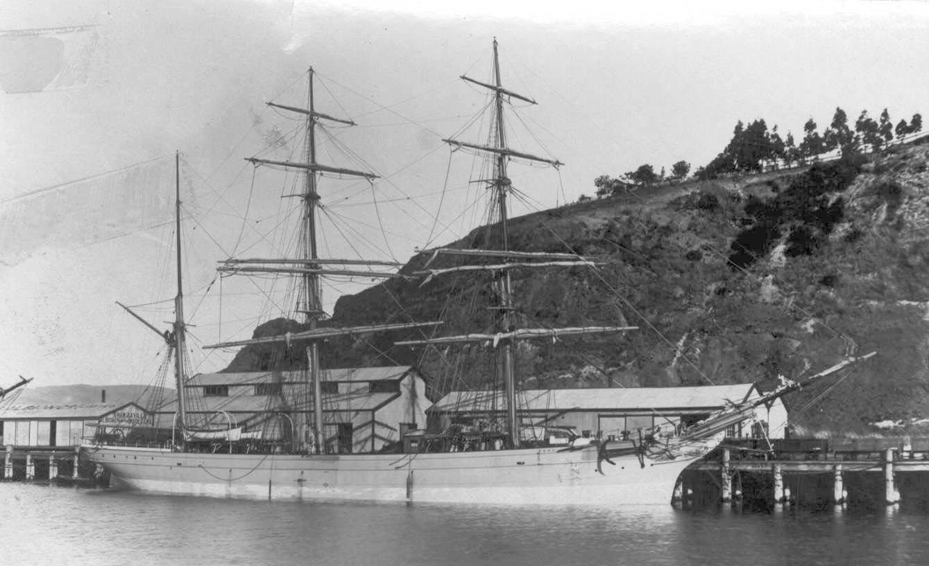 """Iron Barque """"Peru"""", built in 1876 by Kinghorn J Key & sons.  Owned by J Stewart & Co - Dundee.  Tonnage:  683 gross, 675 net Official Number:  75188 Dimensions:  length 182'$', breadth 30'1"""", draught 17'8"""" Port Of Registry:  London"""