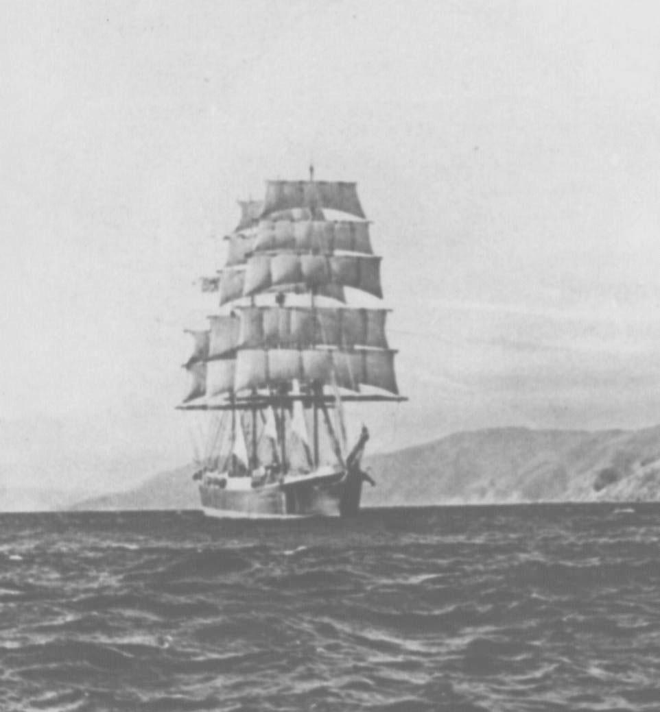 This image shows vessel near the coast of New Zealand.