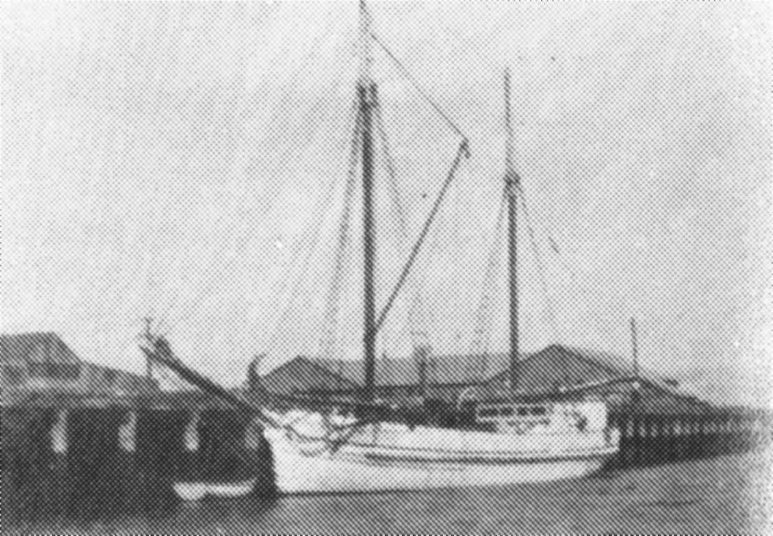 two masted schooner with round stern, 1 deck and carvel built.  Built in 1873 in Port Adelaide as a steamer, she was rerigged in 1875 and her engine removed.  An auxilliary engine was refitted in 1915 (36 bhp).  Vessel was owned by H D Dale, 1873 W Hamilt