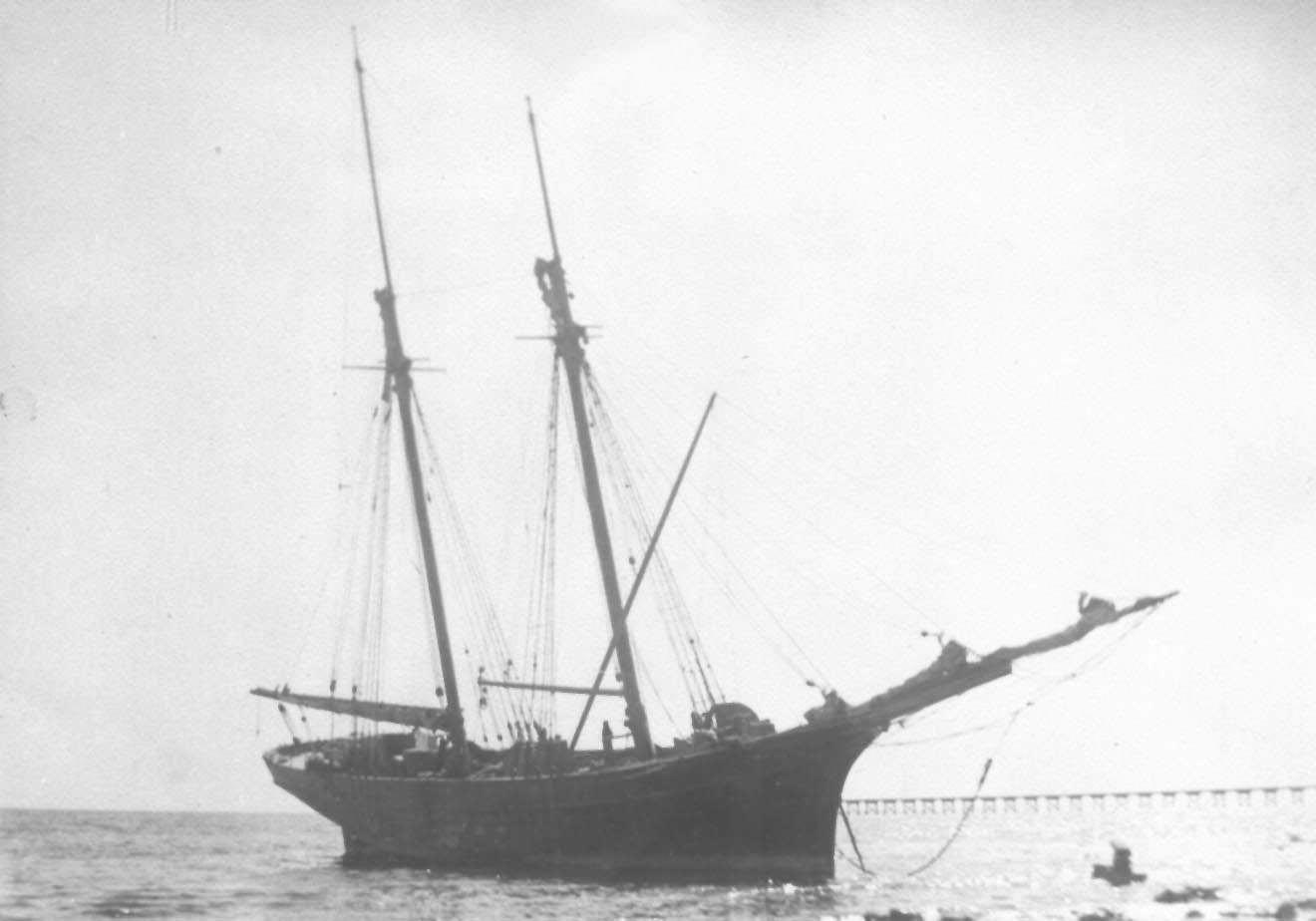 2 masted schooner, built in 1874 by John Lowen, Port Adelaide.  Vessel has 1 deck a round stern and is carvel built.  Owned by John Kuhl & Partners, vessel foundered inSt Vincent' sGulf on Dec 15 1876 and was subsequently raised, repaired and re-registere
