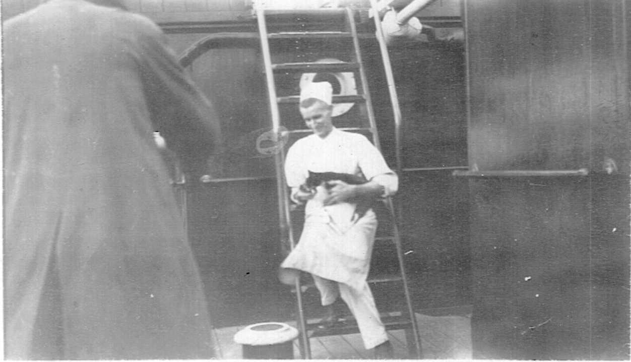 Ship's Cook holding cat on board ship at McLaren Wharf, Port Adelaide, 8 April, 1931