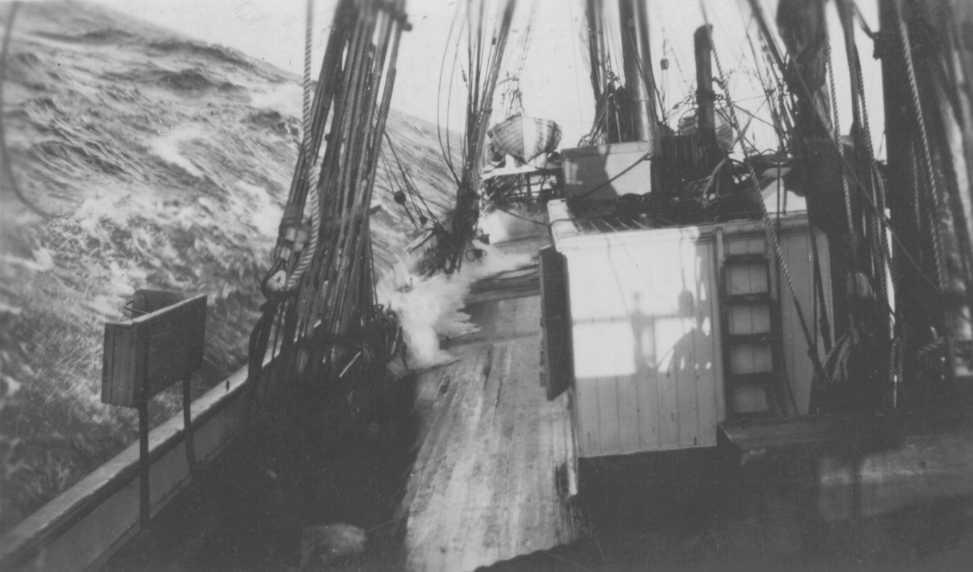Off west coast New Zealand, May 1920.
