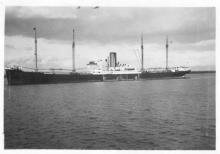 "Passenger cargo vessel ""Main"", built in 1927 by Bremer Vulkan - Vegesack, owned by Norddeutscher lloyd. Tonnage:  7624 gross, 4741 net Dimensions:  length 503'1"", breadth 63'1"", draught 28'3"" Port Of Registry:  Bremen Flag:  German"