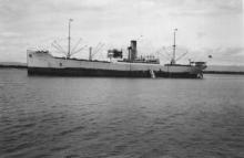 "Refrigerated cargo vessel ""Boren"", built in 1921 by Akt. Lindholmen Motala - Gothenburg.  Owned by Rederi A'B Transatlantic, managed by G. Carlsson. Tonnage:  4720 Dimensions:  length 377'0"", breadth 54'0"", draught 24'0"" Port Of registry:  Gothenburg"
