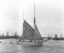 """Ketch """"Florence Maud"""", a wooden 2 masted vessel built in 1887 by Thomas Bennet, Snr, at Swan Point, River Tamar, Tas.  In February 1900 she was first registered at Port Adelaide by W.J. Spells & R. Fricker.  In 1920 she was registered to G. Anderson and i"""