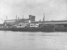 "General cargo vessel ""Grace Darling"", built in 1907 at Hardenfveldt, Holland by Van Vliet & Co for John Darling & Co - Port Adelaide. Tonnage:  627 gross Dimensions:  length 175', breadth 27', draught 13' Official Number:  122722"