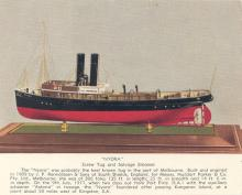 """Tug """"Nyora"""", a single screw steamship, built in 1909 by J.P. Rennoldson & Sons, Sth Shields.  Owned by Huddart Parker & Co Pty. Ltd, reg. Melbourne and foundred about 50 miles west of Kingston SA on a voyage to Eastern states after passing Kangaroo Island"""