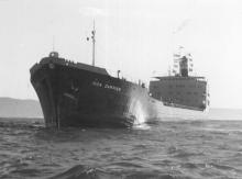 """Ore Carrier, """"Iron Dampier"""", 14,037 tons.  Built in Whyalla in 1961 and employed in steel trades from 1961 to 1978.  Owned by BHP then sold to Ship breakers. Official number:  316401 Dimensions:  length 176.99, breadth 21.47, draught 9.195m Speed:  14"""