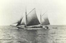 """Ex """"JC Taylor"""", 2 masted ketch, built in 1885 by Edward Higgs, Torquay, co.  Devon, Tasmania.  Renamed """"Priscilla"""" in 1901 and an auxilliary engine was fitted in 1927 (18 bhp).  Registered in Port adelaide in October 1900 by Samual James Bishop, later SJ"""