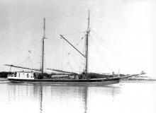 2 masted ketch, formerly of Melbourne, built in 1881.  First owned by James Barbour, Aratapu, Auckland NZ, the registered in Port Adelaide in May 1910 by David Deex and R Fricker.  Register transferred to Melbourne in September 1913 although vessel contin